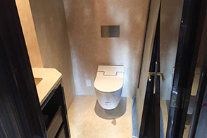 Toilets and Wall Mounted Toilets